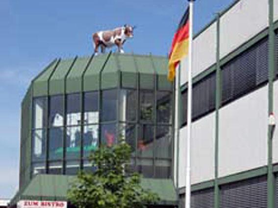Oppermann GmbH